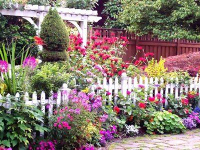 flores-bonitas-valla-blanca-plantas-variedad-1