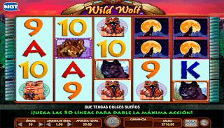 wild-wolf-tragamonedas