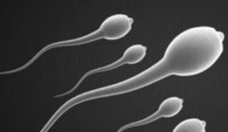 hechizo-esperma